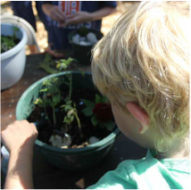 Gardening Classes and Workshops at Pine Hill